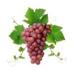 Decorative fresh pink grape — Stock Photo
