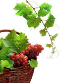 Pink grape in basket with vine — Stock Photo