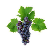 Decorative blue grape — Stock Photo