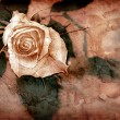 Stock Photo: Rose in grungy style