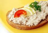 Tuna fish spread in detail — Stock Photo