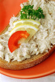 Tuna fish spread on red plate — Stock Photo