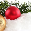Branch with Christmas ball — Stock Photo
