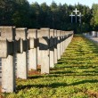 Old military cemetery — Stock Photo