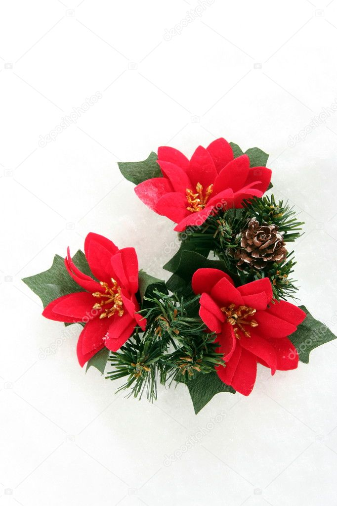 Red Christmas  decoration with Poinsettia , laying on white snow — Stock Photo #2298110