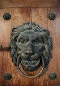 Metal door knocker as lion — Stock Photo