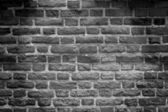 Black & white tone, brick wall — Stock Photo