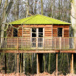 Luxury tree house in the woods - Stock Photo