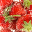 Stock Photo: Strawberries being washed