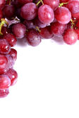 Red grapes with white copy space — Stock Photo
