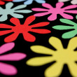 Flower pattern on a black background — Stock Photo
