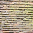 Old English roof - Stock Photo