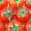 Overhead of baby tomatoes — Stock Photo