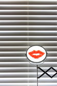 Bathroom blinds with shaving mirror — Стоковое фото
