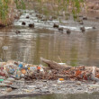 Stock Photo: Recyclable garbage left near duck pond
