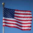 United States Flag — Stock Photo #2262466