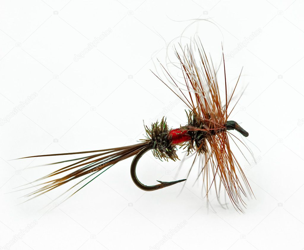 Famous dry fly called a Royal Wulff — Stock Photo #2262411