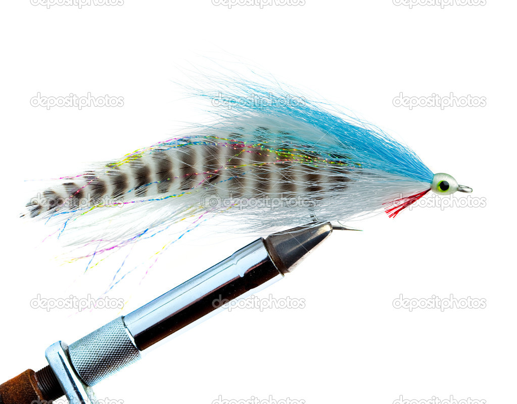 An Imitation Minnow for Saltwater Fly Fishing — Stock Photo #2262431