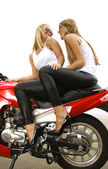 Two blonde — Stock Photo