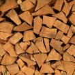 Wood logs — Stock Photo #2292581