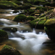 Stream with boulders in the forest — Stock Photo