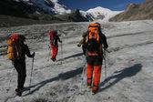 Glacier trekking — Stock Photo