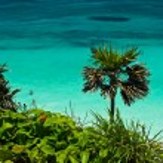 Cancun Beach — Stock Photo #2269816