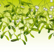 Royalty-Free Stock Vector Image: Mistletoe