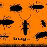 Постер, плакат: Bugs