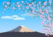 Fuji — Vettoriale Stock