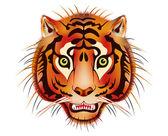 Tiger head — Stock Vector
