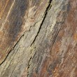 Ragged surface of bluestone — Stock Photo
