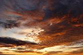 Rosy sky — Stock Photo
