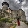 Castle of the holy order — Stock Photo #2433551
