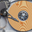Natural hard disc — Stock Photo