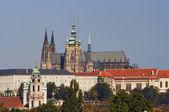 St vitus-katedralen — Stockfoto