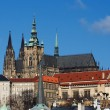Prague castle - Cathedral of St Vitus — Stock Photo