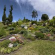Ornamental garden - Photo
