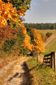 Country road and autumn landscape — Stock Photo