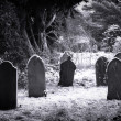 Cemetery & snow — Stock Photo #2194912
