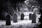 Cemetery & snow — Stock Photo