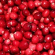 Royalty-Free Stock Photo: Cranberries