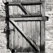 Old door — Stock Photo #2263120