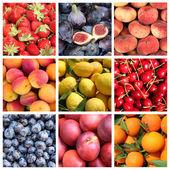 Collage de fruits — Photo