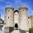 Chateau entrance — Stock Photo #2316764