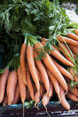 Carrot bunches — Stock Photo