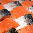Salmon fillets — Stock Photo #2415455