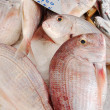 Stock Photo: Greek Fish Market