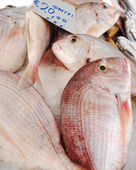 Greek Fish Market — Stock Photo