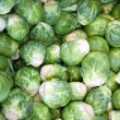 Sprouts background — Stock fotografie